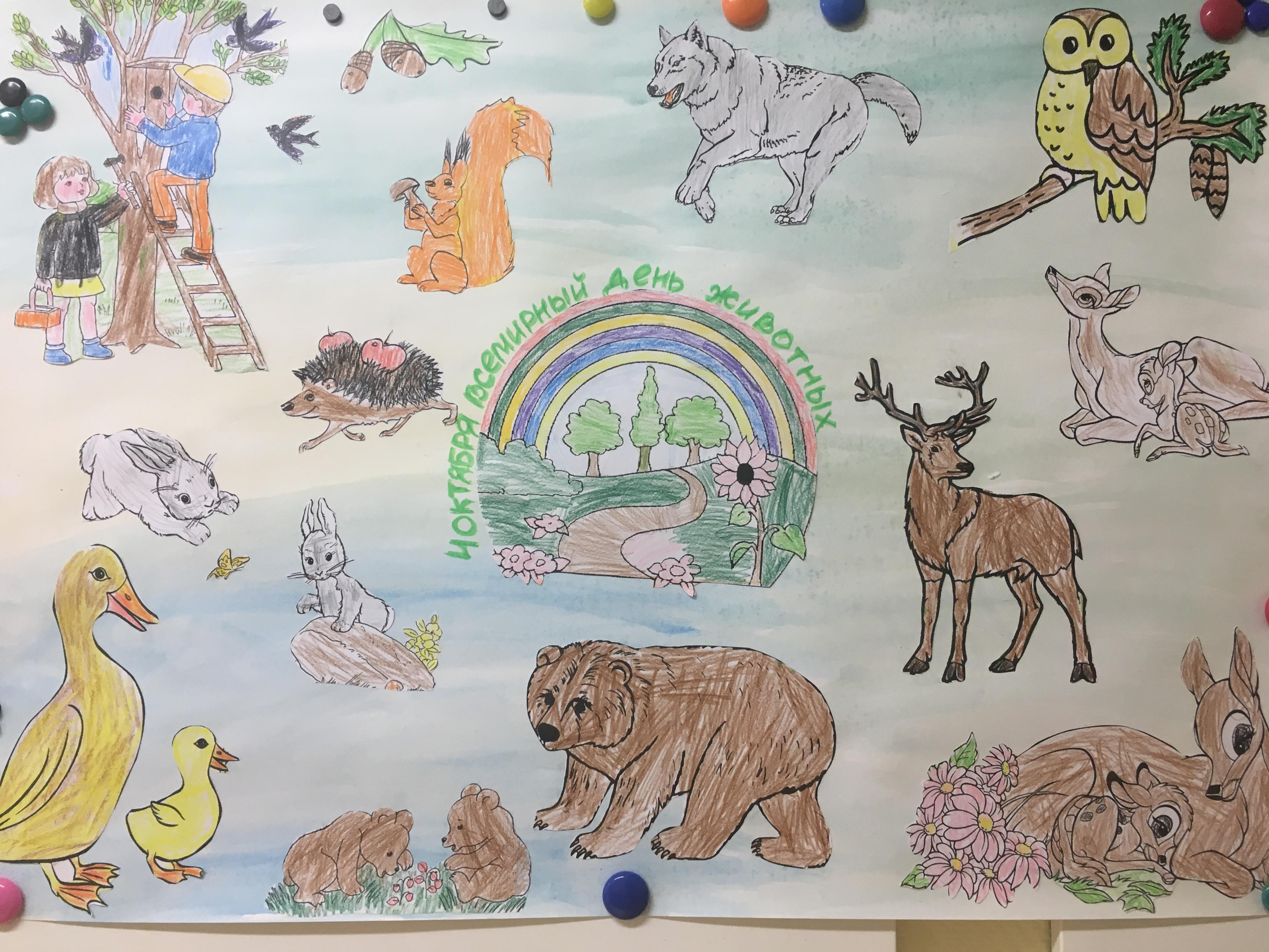 Рисунки берегите животных картинки